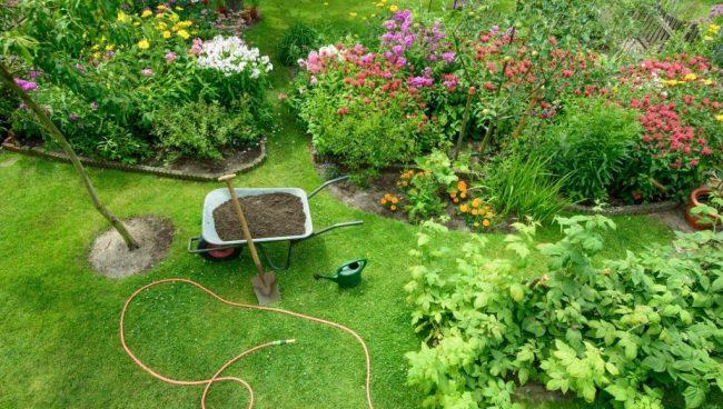 Comment bien s'occuper de son jardin l'été ?